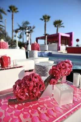 rosasrosas