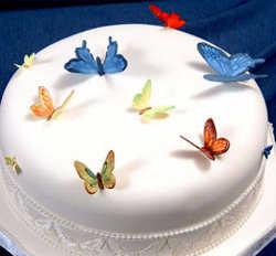 torta-03